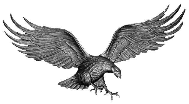 silvereagle